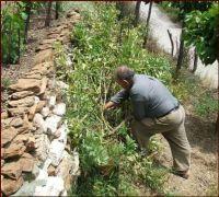 bogaard 5 crop 1 484c93fb